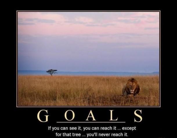 goals 7936 goals meme guy