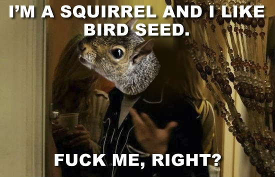 after reading the thread about how to squirrel proof a birdfeeder 21289 after reading the thread about how to squirrel proof a birdfeeder
