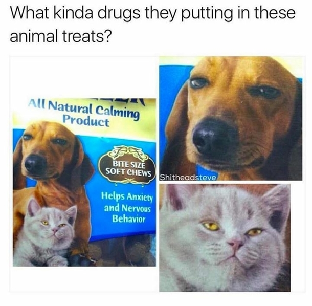 Are they mixing drugs in their animal foods nowadays