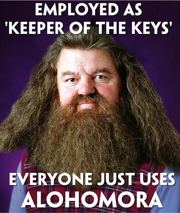 bad luck hagrid the worst example of a made up job ever 46133 bad luck hagrid the worst example of a made up job ever meme guy