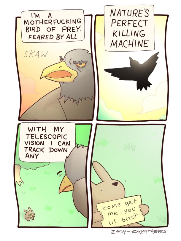 Bird Of Prey Meme Guy
