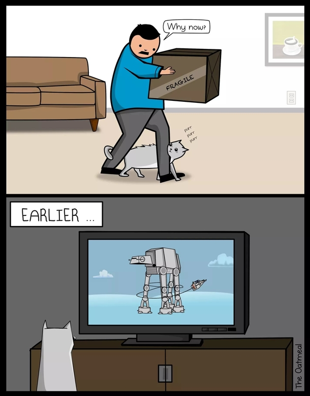 Cats Are Star Wars Fans Comic By The Oatmeal Meme Guy