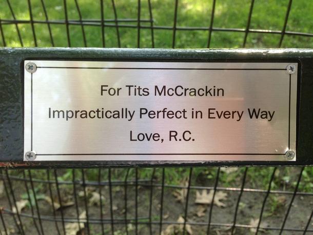 Classic Central Park Bench Plaque Meme Guy