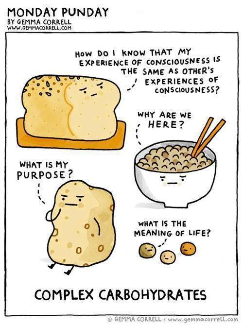 Carbohydrates Carbohydrates Science Definition