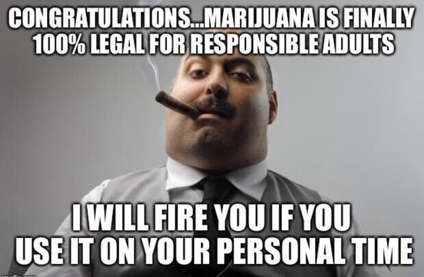 CONGRATULATIONS MICHIGAN ON THE LEGALIZATION OF MARIJUANA And now a word from your employer