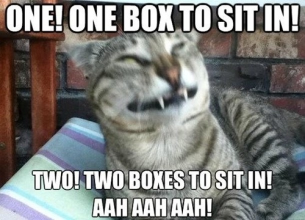 Counting with Count Kitteh - Meme Guy