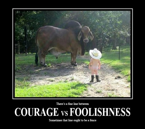 Courage vs Foolishness