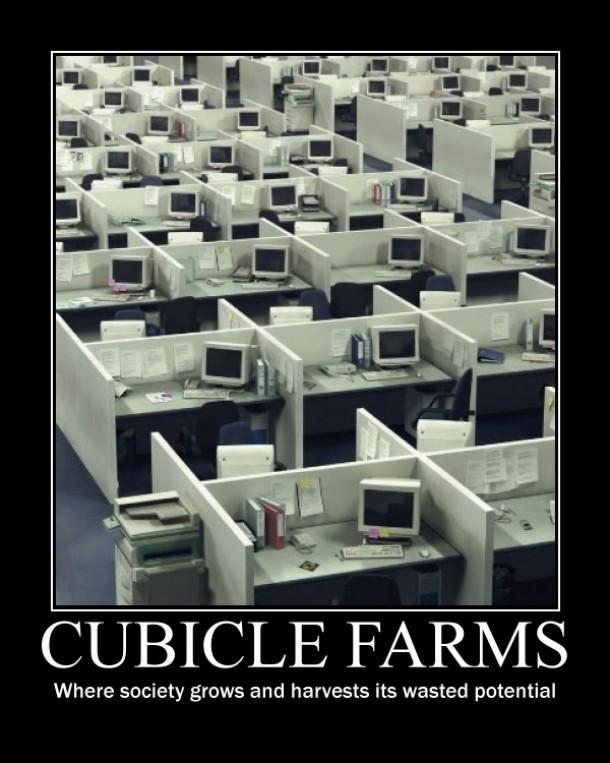 Cubicle Farms Meme Guy