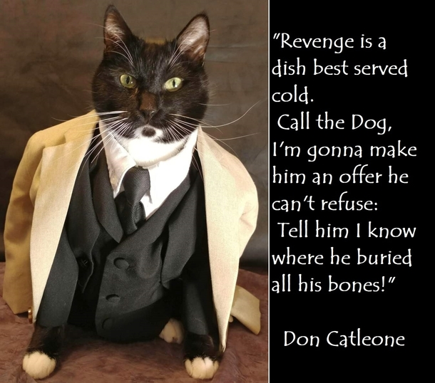 Don Catleone Im Gonna Make Him An Offer He Cant Refuse Meme Guy
