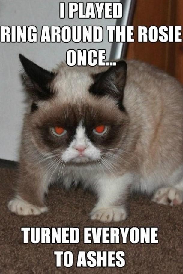 Evil Cat Pictures 2