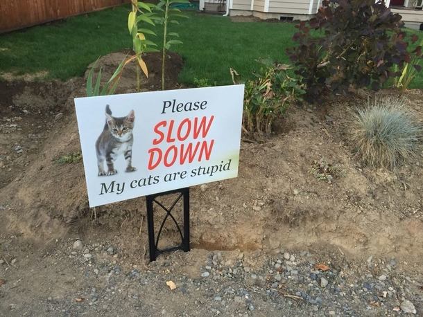 Finally An honest yard sign