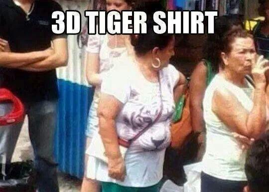 for all the cat lovers 89516 for all the cat lovers meme guy,Cat Lover Meme