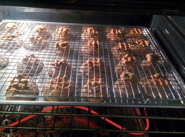Friend tried to avoid burning her cookies by putting them on a wire rack