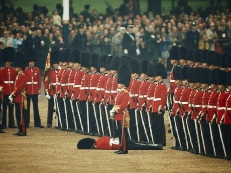 Guard faints during ceremony other guards remain unwaiveringly British