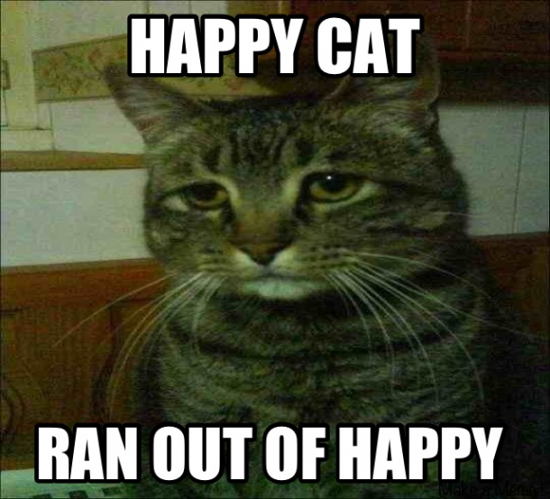 happy cat memes - photo #21