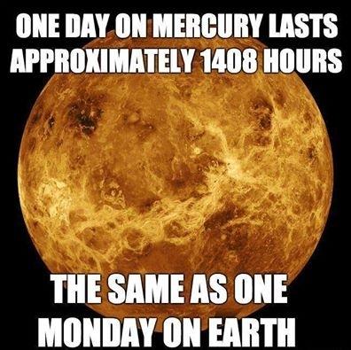 Happy Monday everybody - Meme Guy