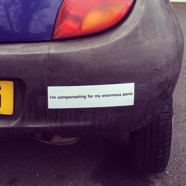 Hope Reddit Likes My New Bumper Sticker I Drive A Purple Ford Ka