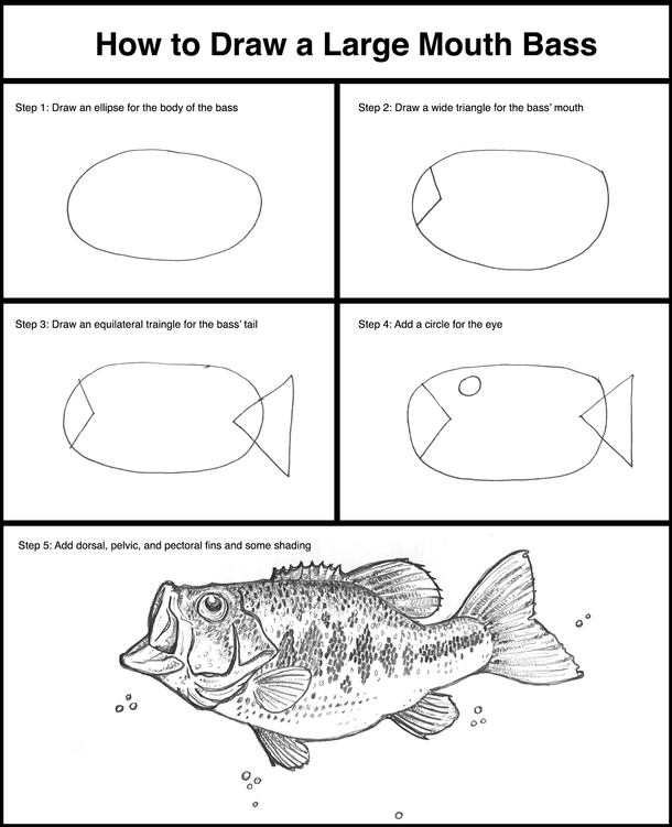 How To Draw A Large Mouth Bass Meme Guy Largemouth Drawings Likes 129