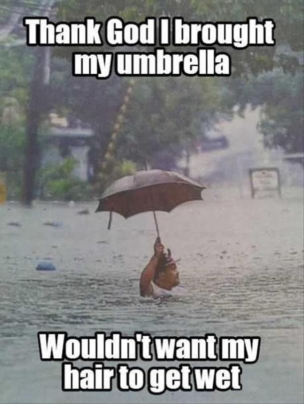 i-brought-my-umbrella-299461.jpg