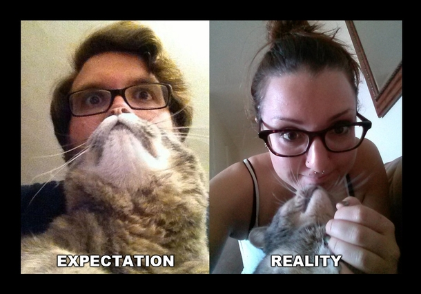 i just wanted my own cat beard 55479 i just wanted my own cat beard meme guy