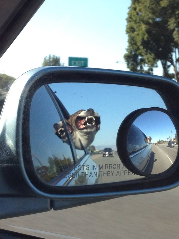 I look into the side-view mirror of my friends car while ...