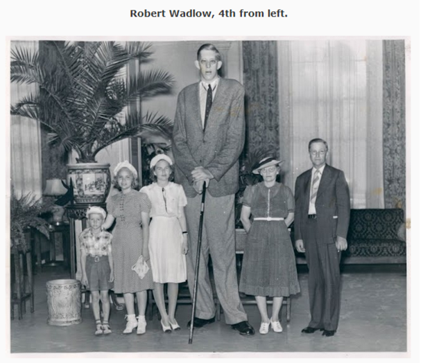 I was reading an article about Robert Wadlow the tallest man to have ever lived when they showed this picture It made me crack up