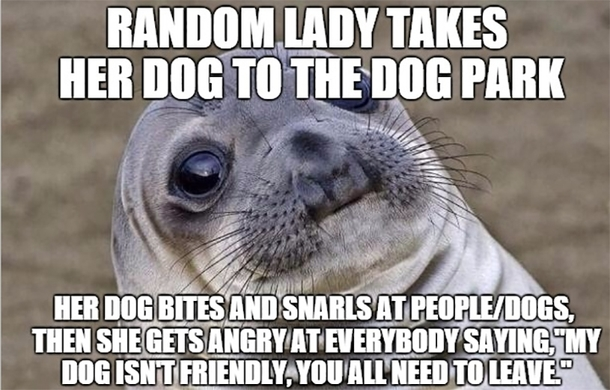 If your dog isnt nice dont take it to the dog park
