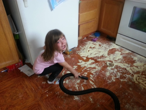 If youre  years old terrified of the vacuum and you dump baby formula on the floor youre gonna have a bad time