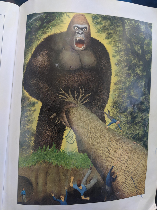 Illustration in a King Kong book at my local library