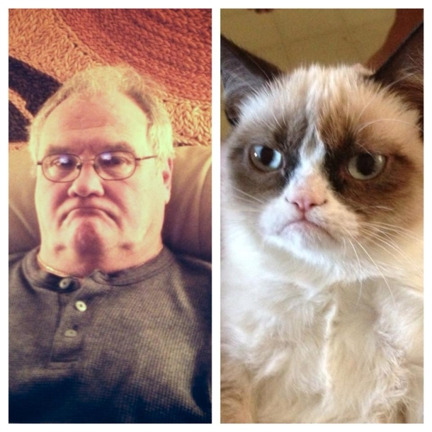 In honor of Fathers day this weekend here is a side by side comparison of my dad and grumpy cat