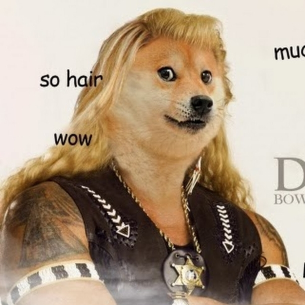 made a typo whilst looking for pics of dog the bounty hunter was not disappointed 130770 made a typo whilst looking for pics of dog the bounty hunter was