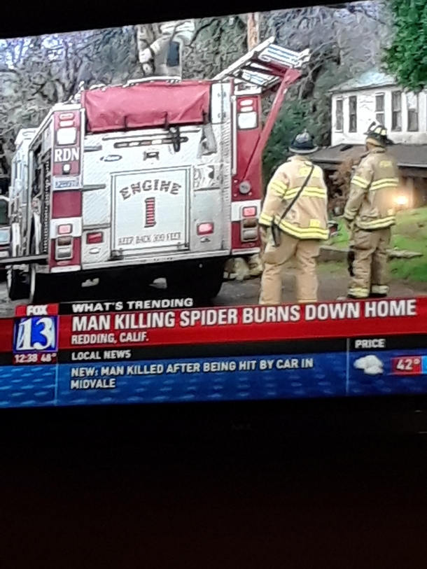 Man Burns Down His Home Trying To Kill A Spider Meme Guy