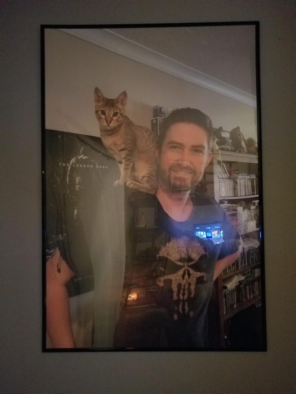 My Buddy Gave My Fiance And I A Photo Of Himself And His Cat As A