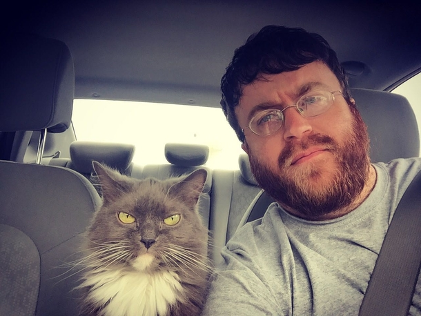 My cat and I enjoy driving around town and disapproving of everyone we see