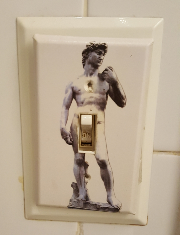 My Cousins Bathroom Light Switch Cover