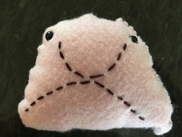 My kid made a blobfish as a school sewing project