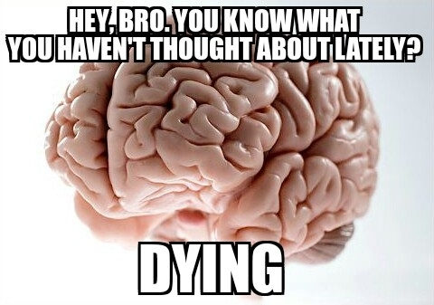 My scumbag brain last night when I was trying to fall asleep