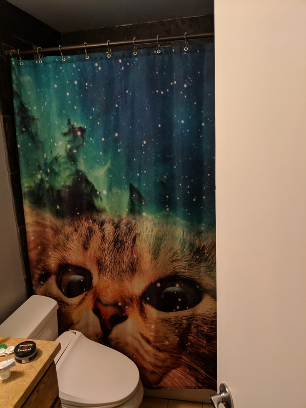 My Wife Barred Me From Drunken EBay Purchases After I Bought A Shower Curtain