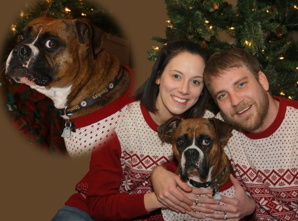 my wife wanted an ugly sweater christmas card so i turned it into an awkward family photo 149382 my wife wanted an ugly sweater christmas card so i turned it into