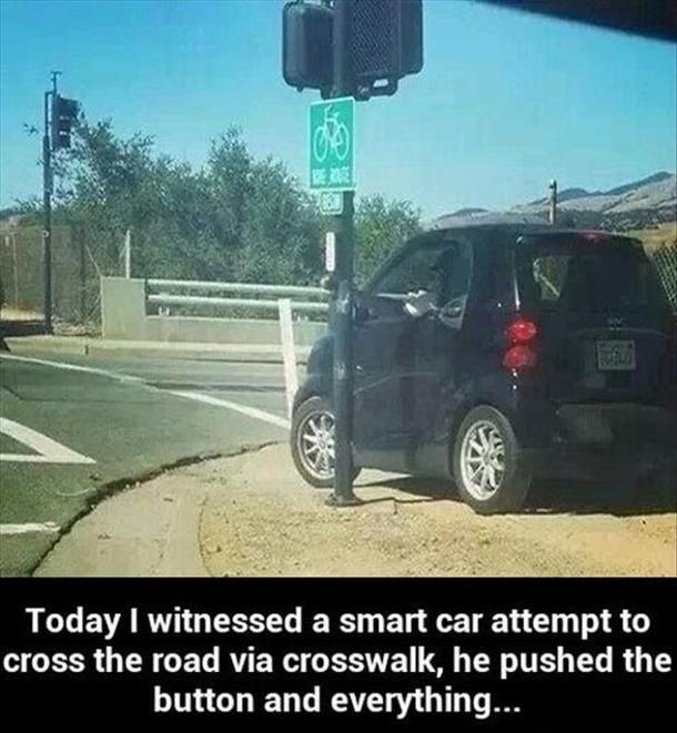 not so smart car 125466 not so smart car meme guy
