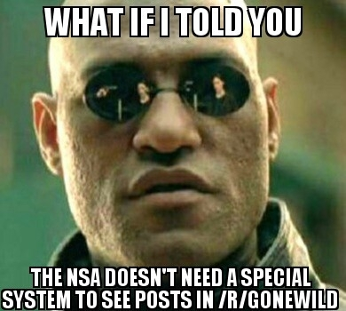 NSA viewing Gonewild