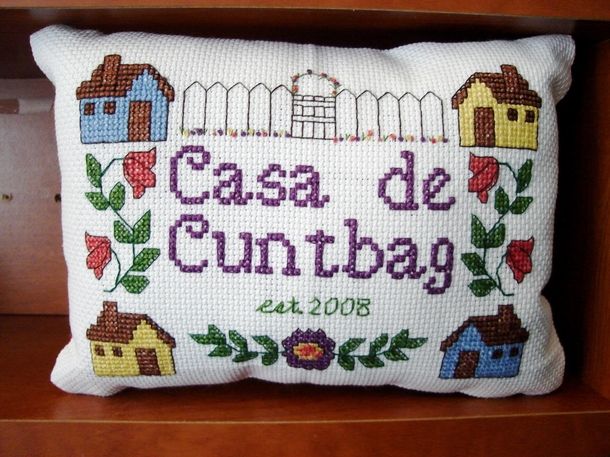 On an online forum frequented by my wife and me one troll dubbed my wife a cunt and myself a douchebag When we bought our first house together one of our friends gave us this lovely cross stitch as a housewarming present