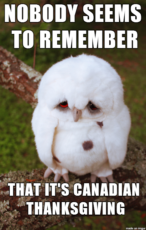 Only saw one post about the holiday in Canada today