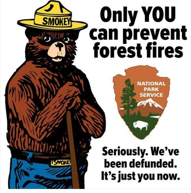 only you can prevent forest fires meme guy