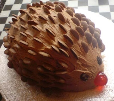 Hedgehog Cake Recipe Chocolate Buttons