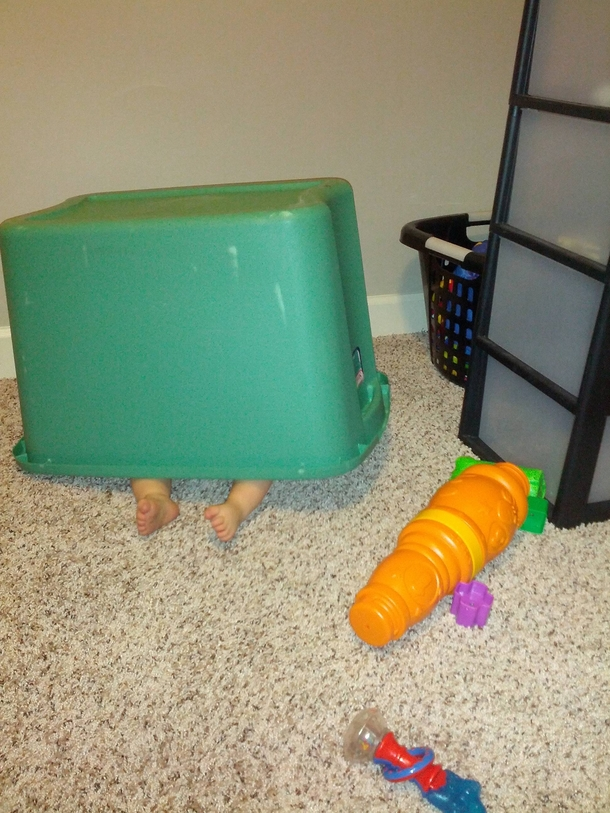 Pic #1 - I set a trap for my son using his favorite ball
