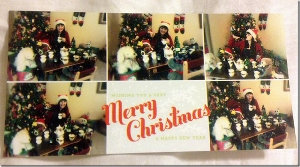 Pic #2 - My single sisters very single Christmas cards