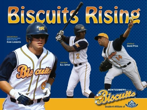Minor League Baseball Team Names And Logos