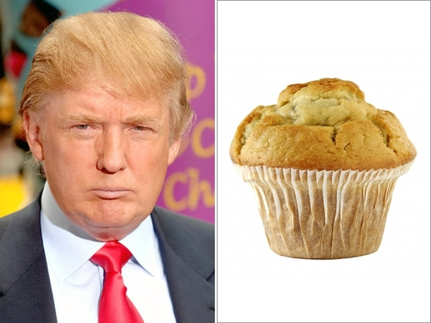 Pic #4 - Things Donald Trump looks like
