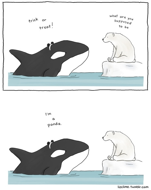 Pic 5 Animal Encounters Guaranteed To Cheer You Up By Liz Climo